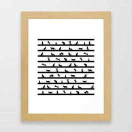 Funny cats Framed Art Print
