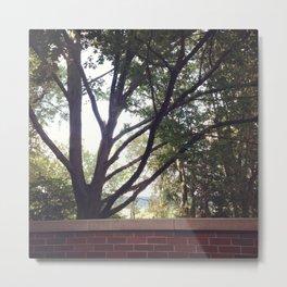 Summer at Ohio University Metal Print