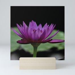 Purple Sacred Lotus Mini Art Print