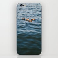ducks iPhone & iPod Skins featuring ducks. by Justine Montigny