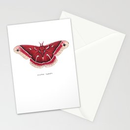 Ceanothus Silkmoth (Hyalophora euryalus) Stationery Cards