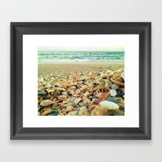 Shore and Shells Framed Art Print