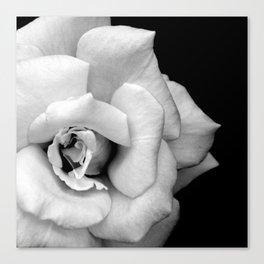 Rose Monochrome Canvas Print