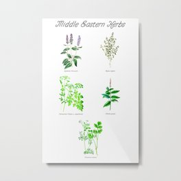 Middle Eastern Herbs Metal Print