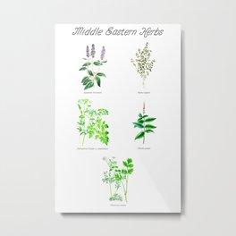 Middle Eastern Herbs Metal Print