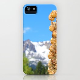 Natures Seasons/ Snowy Mountain/ Foliage Landscape/ Tall Plant Against Green Trees and Snowy Mountai iPhone Case