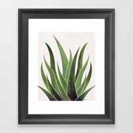 Vintage Agave / Desert Succulent Framed Art Print