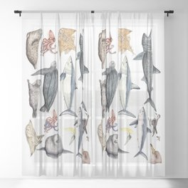 Marine wildlife Sheer Curtain