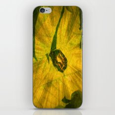 Jewel Bug. iPhone & iPod Skin