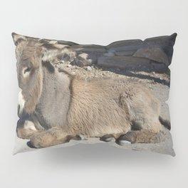 Donkey of Oatman Pillow Sham