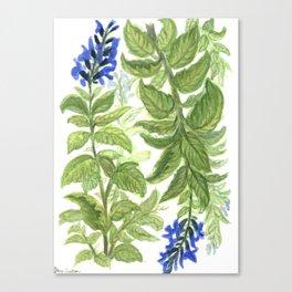 Blue Wildflower Watercolor Canvas Print