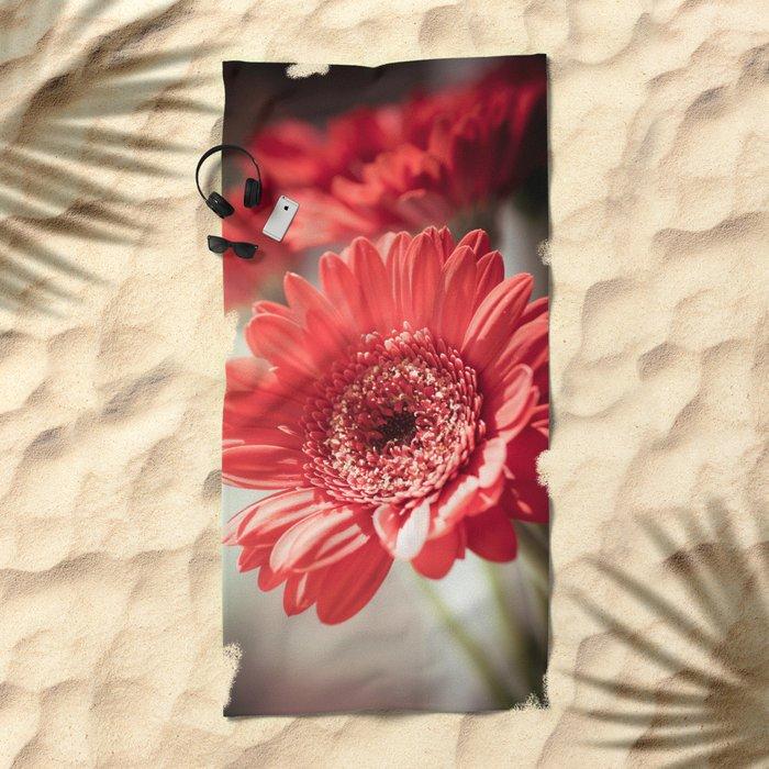 Red Gerbera Beach Towel