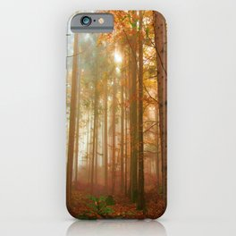 Trees in the Forest - Autumn iPhone Case