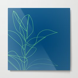 Rubber Plant Drawing ( on blue ) Metal Print