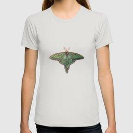 Vitrail  T-shirt
