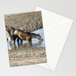 Thirst Stationery Cards
