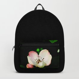 Quince Pink Flower and Bud Backpack