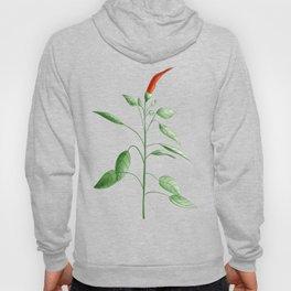 Little Hot Chili Pepper Plant Hoody