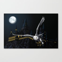 Hedwig's flight at Night Canvas Print