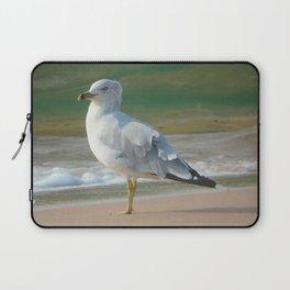 Ring-billed Gull Laptop Sleeve