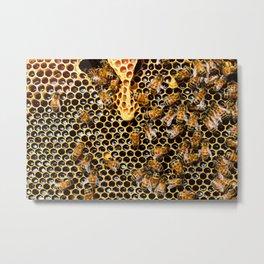 swarm of bees on honeycomb Metal Print