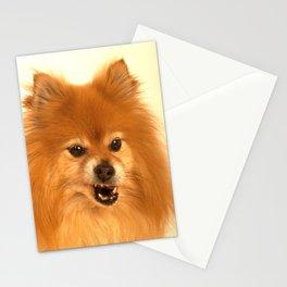Angry Pomeranian dog Stationery Cards