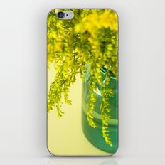 Golden iPhone & iPod Skin