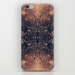 The Enchanted Forest No.9 iPhone Skin