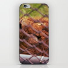 the imprisoned king iPhone & iPod Skin