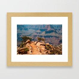 Kaibab Trail Framed Art Print