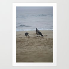 the good feathers Art Print