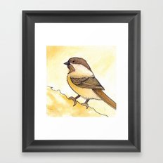 Yellow Black-capped Chickadee Framed Art Print