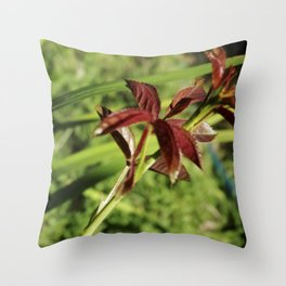 without thorns Throw Pillow