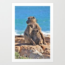 Mother and Baby Monkey Art Print