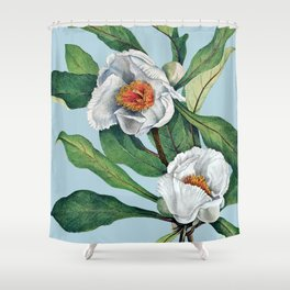 Franklin tree flowers Shower Curtain