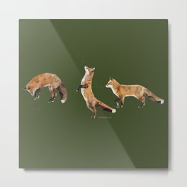Playful Fox Metal Print