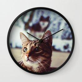 Cat by Zach Reiner Wall Clock