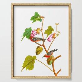 Bay Breasted Warbler John James Audubon Vintage Scientific Illustration American Birds Serving Tray