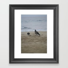 the good feathers Framed Art Print