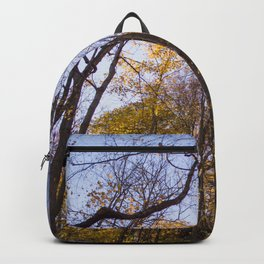 Out of the Woods - Fall Forest Photography Backpack