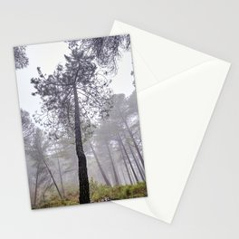 Tall Laricio pine forest. Into the foggy woods. Stationery Cards