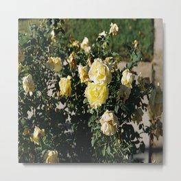 (the floral affair) Metal Print