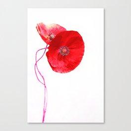 Poppies (duet) Canvas Print