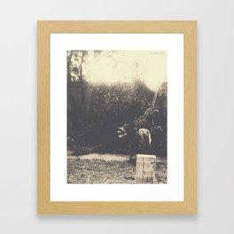 turbones Framed Art Print
