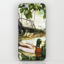 Mallards on the St. Joseph River iPhone Skin