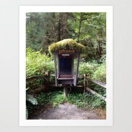 Phone Booth in Olympia National Park Art Print