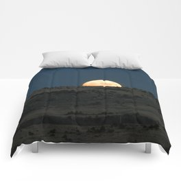Peek-A-Boo Comforters