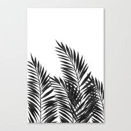 Palm Leaves Black Canvas Print