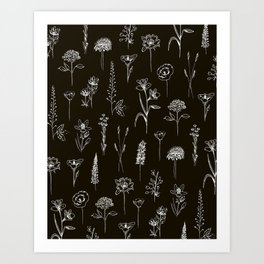 Patagonian wildflowers Art Print