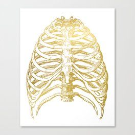 Gold Rib Cage Canvas Print